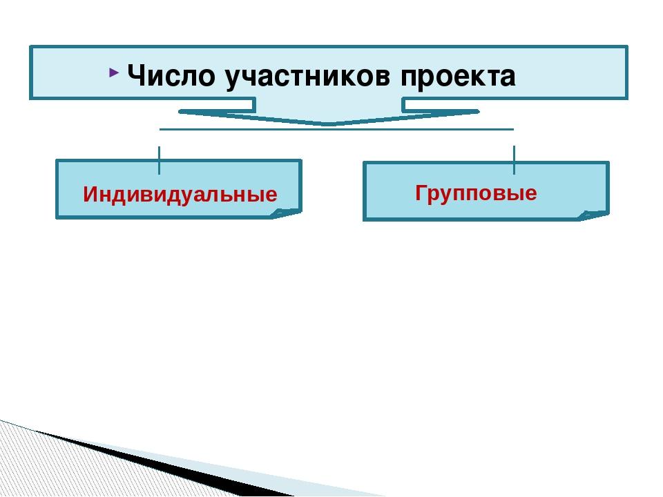 Число участников проекта Индивидуальные Групповые