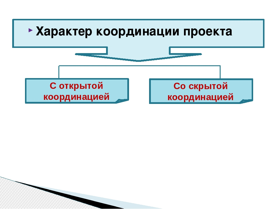Характер координации проекта Со скрытой координацией С открытой координацией