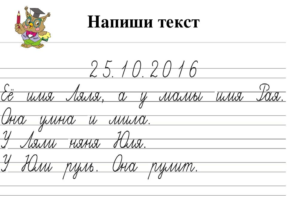 Напиши текст