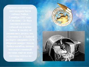 Первым космическим пассажиром была собака Лайка. 3 ноября 1957 года «Спутник