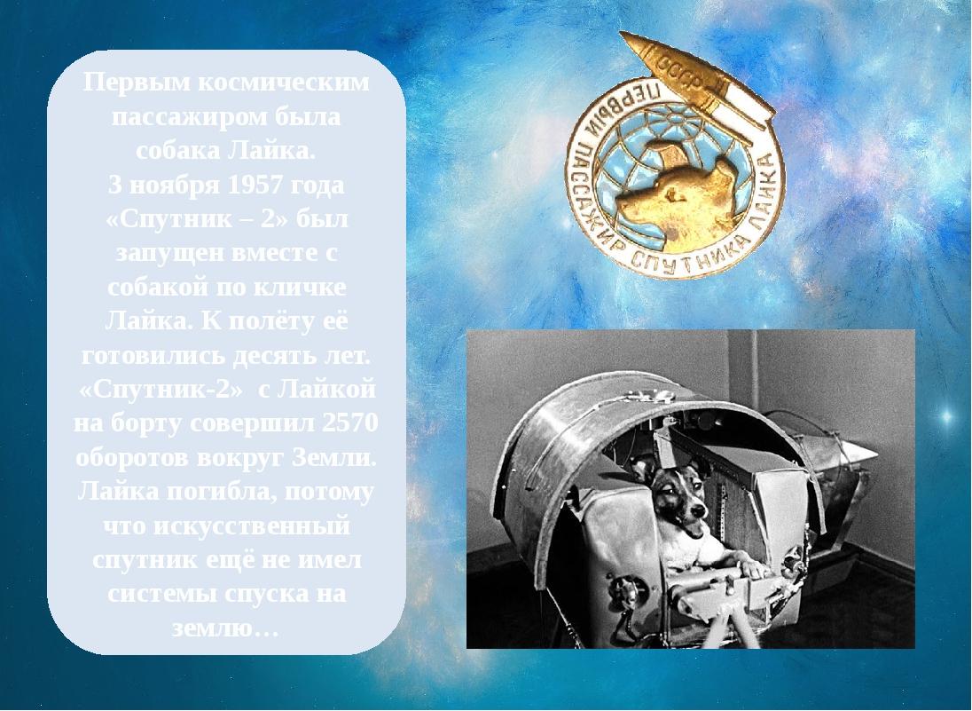 Первым космическим пассажиром была собака Лайка. 3 ноября 1957 года «Спутник...