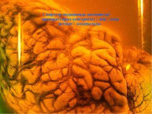 Спирттер медицинада антомиялық препараттарды консервілеу үшін қоспа ретінде қ