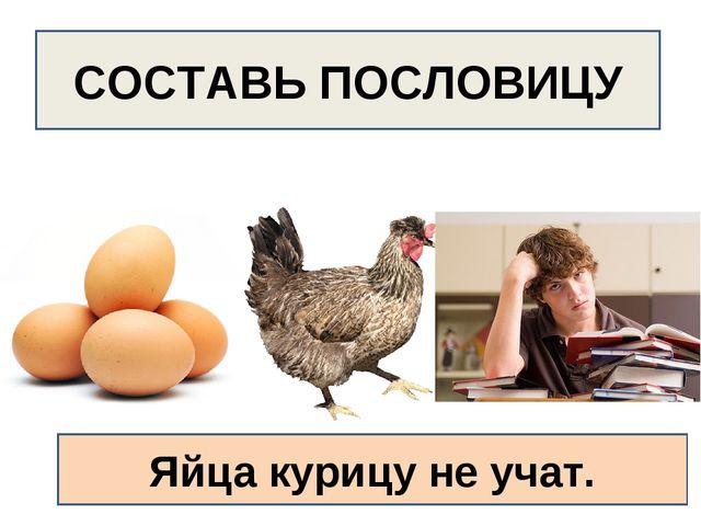 СОСТАВЬ ПОСЛОВИЦУ Яйца курицу не учат.