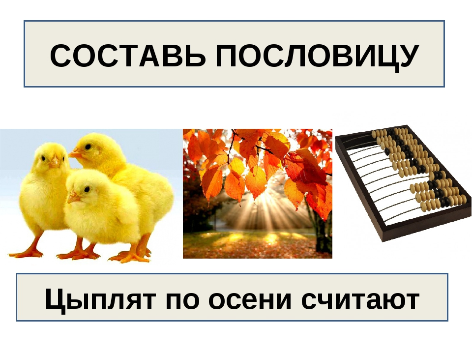 СОСТАВЬ ПОСЛОВИЦУ Цыплят по осени считают