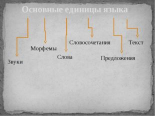 Основные единицы языка Звуки Морфемы Слова Словосочетания Предложения Текст