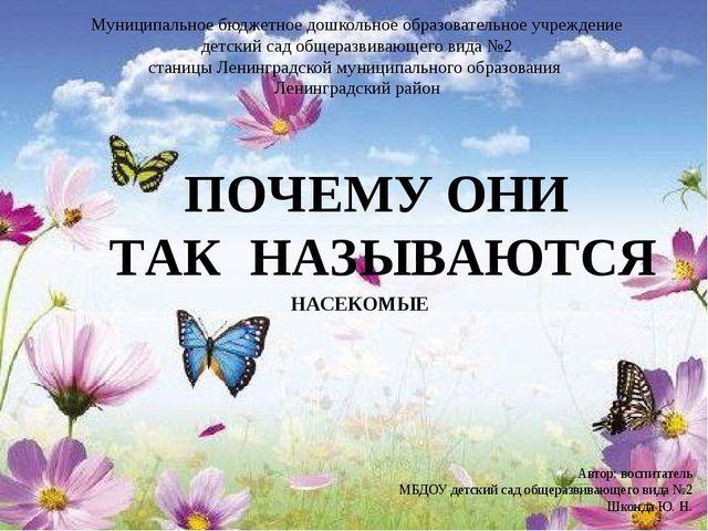 НАСЕКОМЫЕ Автор: воспитатель МБДОУ детский сад общеразвивающего вида №2 Шконд...