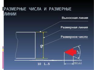 Выносная линия 10 Размерная линия 1...5 45 Размерное число РАЗМЕРНЫЕ ЧИСЛА И