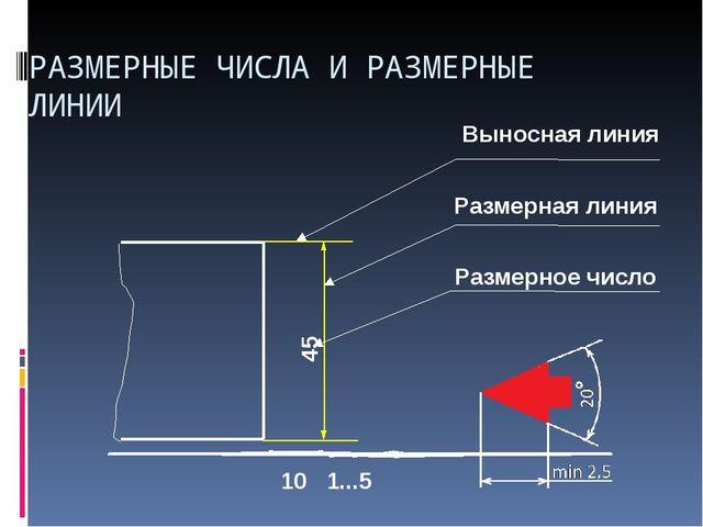 Выносная линия 10 Размерная линия 1...5 45 Размерное число РАЗМЕРНЫЕ ЧИСЛА И...