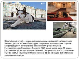 Эрмита́жные коты́— кошки, официально содержащиеся на территории Зимнего двор