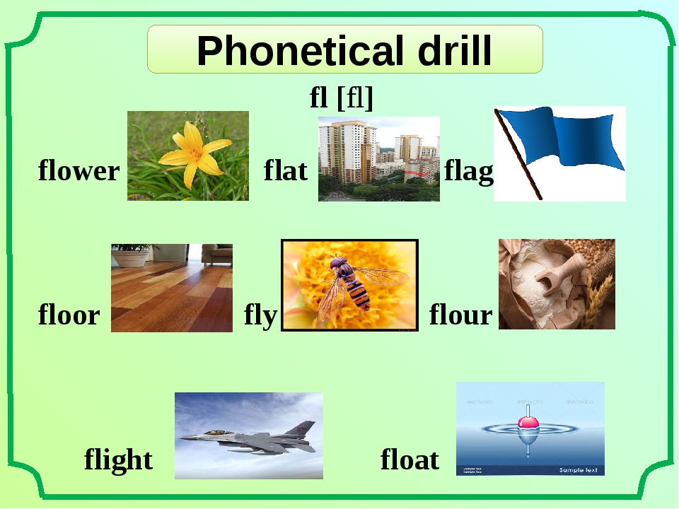 Phonetical drill fl [fl] flower flat flag 	 floor fly flour flight float