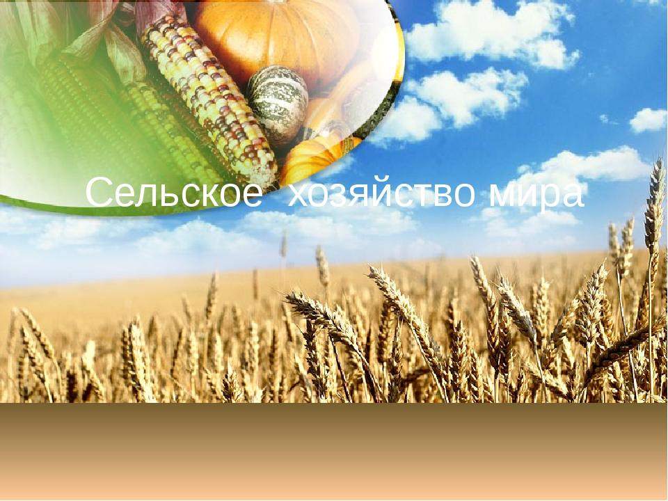 Сельское хозяйство мира