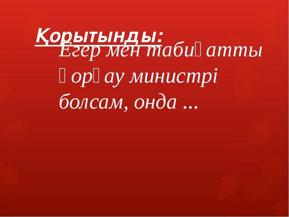 Қорытынды: Егер мен табиғатты қорғау министрі болсам, онда ...