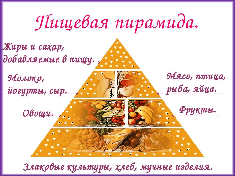 Пищевая пирамида.
