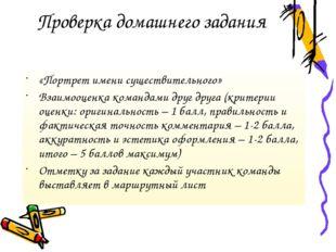 Проверка домашнего задания «Портрет имени существительного» Взаимооценка кома