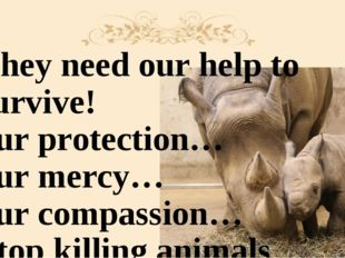 They need our help to survive! our protection… our mercy… our compassion… Sto