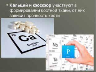 Кальций и фосфор участвуют в формировании костной ткани, от них зависит прочн