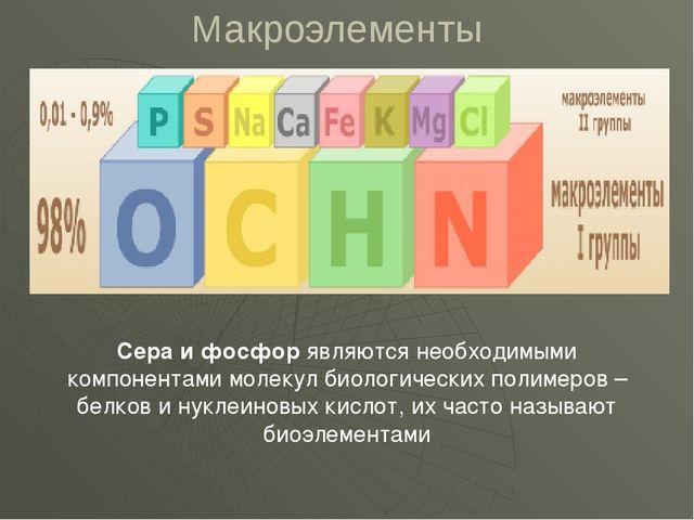 Макроэлементы Сера и фосфор являются необходимыми компонентами молекул биолог...