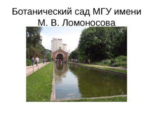 Ботанический сад МГУ имени М. В. Ломоносова