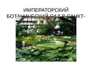 ИМПЕРАТОРСКИЙ БОТАНИЧЕСКИЙ САД В САНКТ-ПЕТЕРБУРГЕ