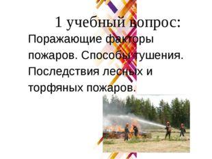 1 учебный вопрос: Поражающие факторы пожаров. Способы тушения. Последствия ле