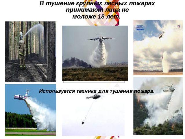 В тушение крупных лесных пожарах принимают лица не моложе 18 лет. Используетс...