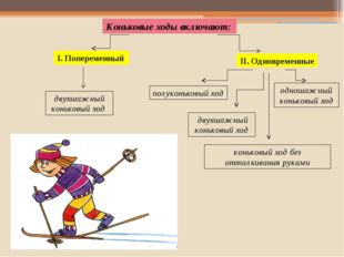 двухшажный коньковый ход Коньковые ходы включают: I. Попеременный II. Одновре