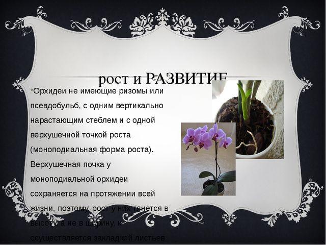 рост и РАЗВИТИЕ Орхидеи не имеющие ризомы или псевдобульб, с одним вертикаль...