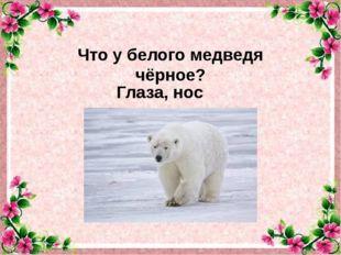 Что у белого медведя чёрное? Глаза, нос