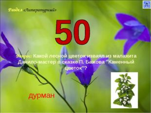 Раздел «Литературный» Вопрос: Какой лесной цветок изваял из малахита Данило-м