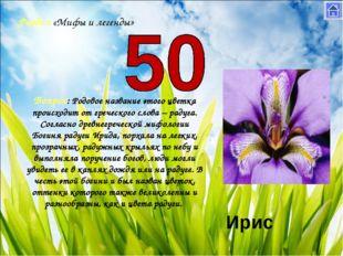 Раздел «Мифы и легенды» Вопрос: Родовое название этого цветка происходит от г