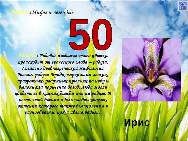 Раздел «Мифы и легенды» Вопрос: Родовое название этого цветка происходит от г...