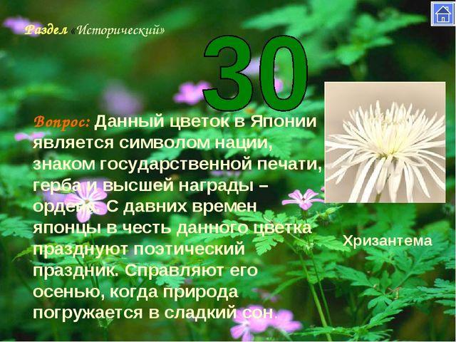 Раздел «Исторический» Вопрос: Данный цветок в Японии является символом нации,...