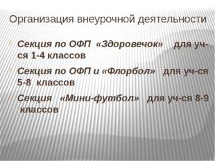 Организация внеурочной деятельности Секция по ОФП «Здоровечок» для уч-ся 1-4