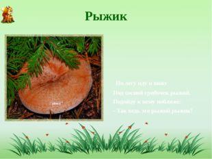 Рыжик По лесу иду и вижу Под сосной грибочек рыжий, Подойду к нему поближе: -