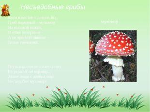 Несъедобные грибы Всем известен с давних пор, Гриб нарядный – мухомор На высо