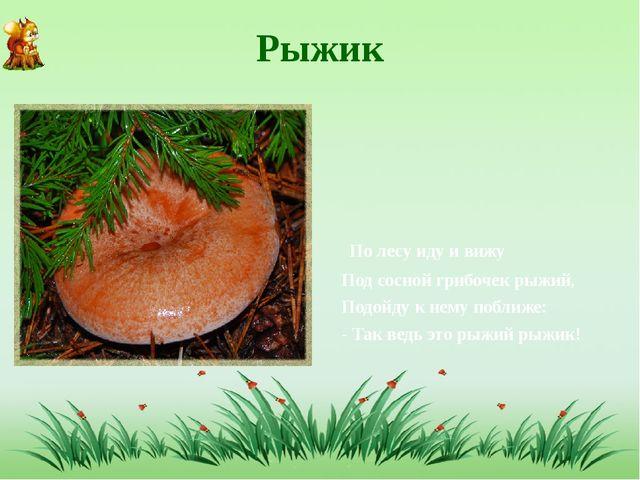 Рыжик По лесу иду и вижу Под сосной грибочек рыжий, Подойду к нему поближе: -...