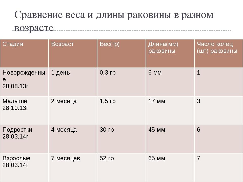 Сравнение веса и длины раковины в разном возрасте Стадии Возраст Вес(гр) Длин...