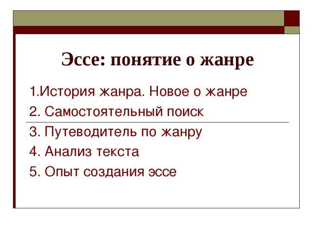 Презентация эссе по русскому языку 9336
