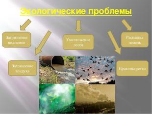 Экологические проблемы Загрязнение водоемов Загрязнение воздуха Уничтожение л
