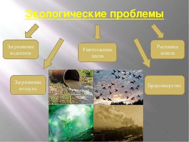 Экологические проблемы Загрязнение водоемов Загрязнение воздуха Уничтожение л...