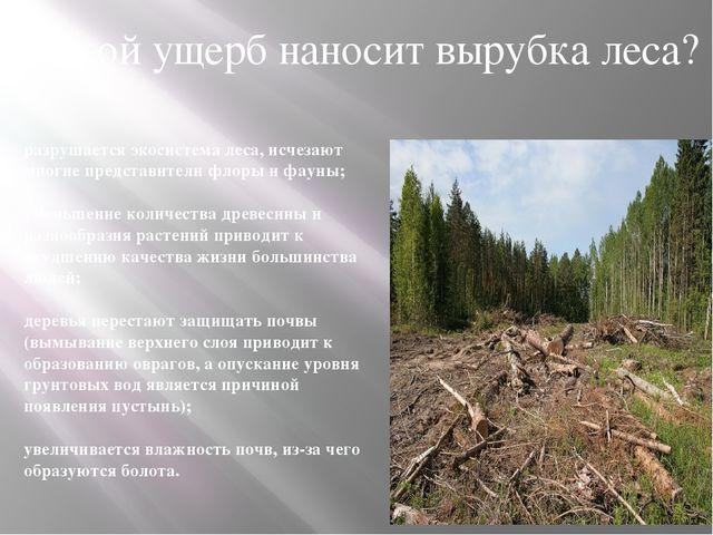 разрушается экосистема леса, исчезают многие представители флоры и фауны; уме...
