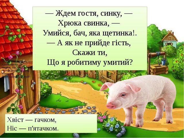 — Ждем гостя, синку, — Хрюка свинка, — Умийся, бач, яка щетинка!. — А як не...