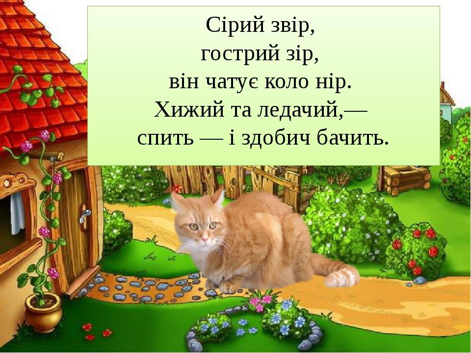 Сірий звір, гострий зір, він чатує коло нір. Хижий та ледачий,— спить — і...