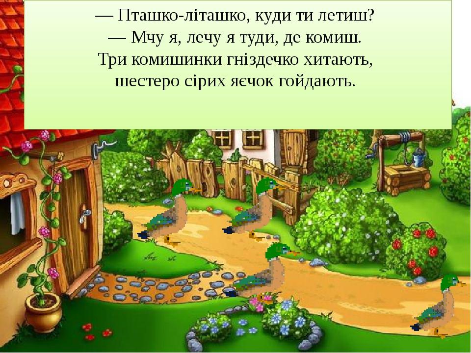 — Пташко-літашко, куди ти летиш? — Мчу я, лечу я туди, де комиш. Три комиши...