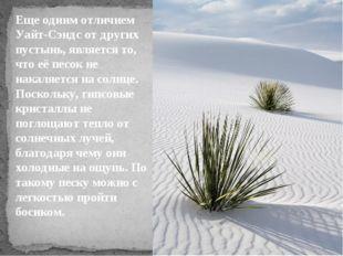 Еще одним отличием Уайт-Сэндс от других пустынь, является то, что её песок не