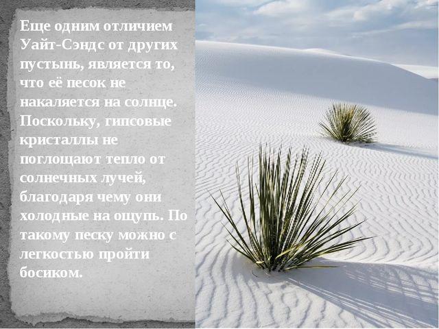 Еще одним отличием Уайт-Сэндс от других пустынь, является то, что её песок не...