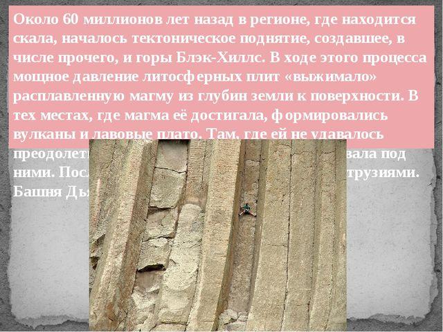 Около 60 миллионов лет назад в регионе, где находится скала, началось тектони...