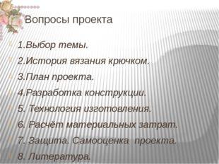 Вопросы проекта  1.Выбор темы. 2.История вязания крючком. 3.План проекта.