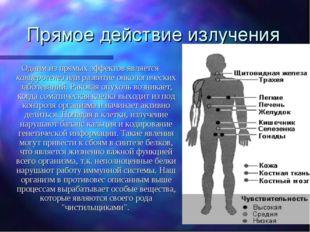 Прямое действие излучения Одним из прямых эффектов является канцерогенез или