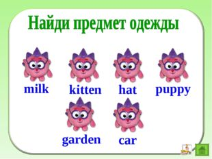 hat puppy garden car milk kitten
